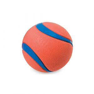 Chuckit! dog ball pet toy
